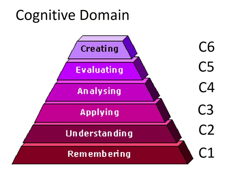 affective domain versus cognitive domai The open questions that we believe will be fruitful for future research applying theories of cognitive aging to social and affective domains although theories of cognitive aging are multifaceted (see.